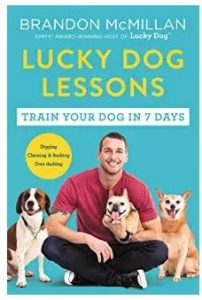 best dog training books for dog lessons