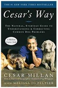 all time best dog training books